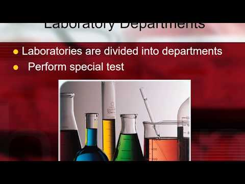 significant-departments-in-phlebotomy.jpg